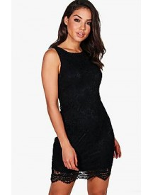 Niamh Lace Sleeveless Bodycon Dress afbeelding