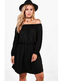 Plus Jasmine Off The Shoulder Skater Dress afbeelding