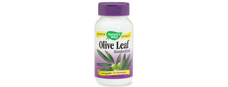 Image Olive Leaf Extract